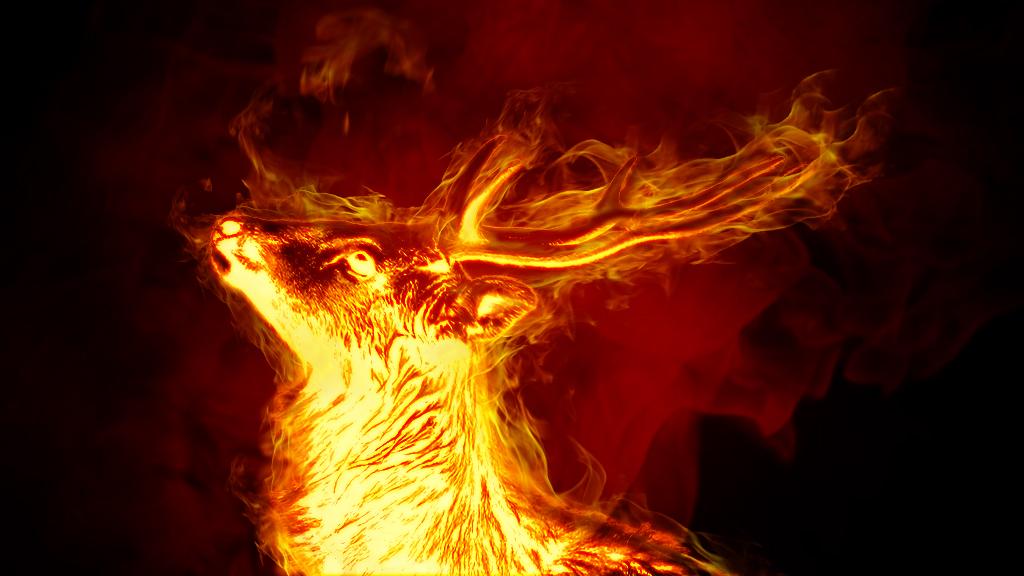 燃え上がる鹿の画像